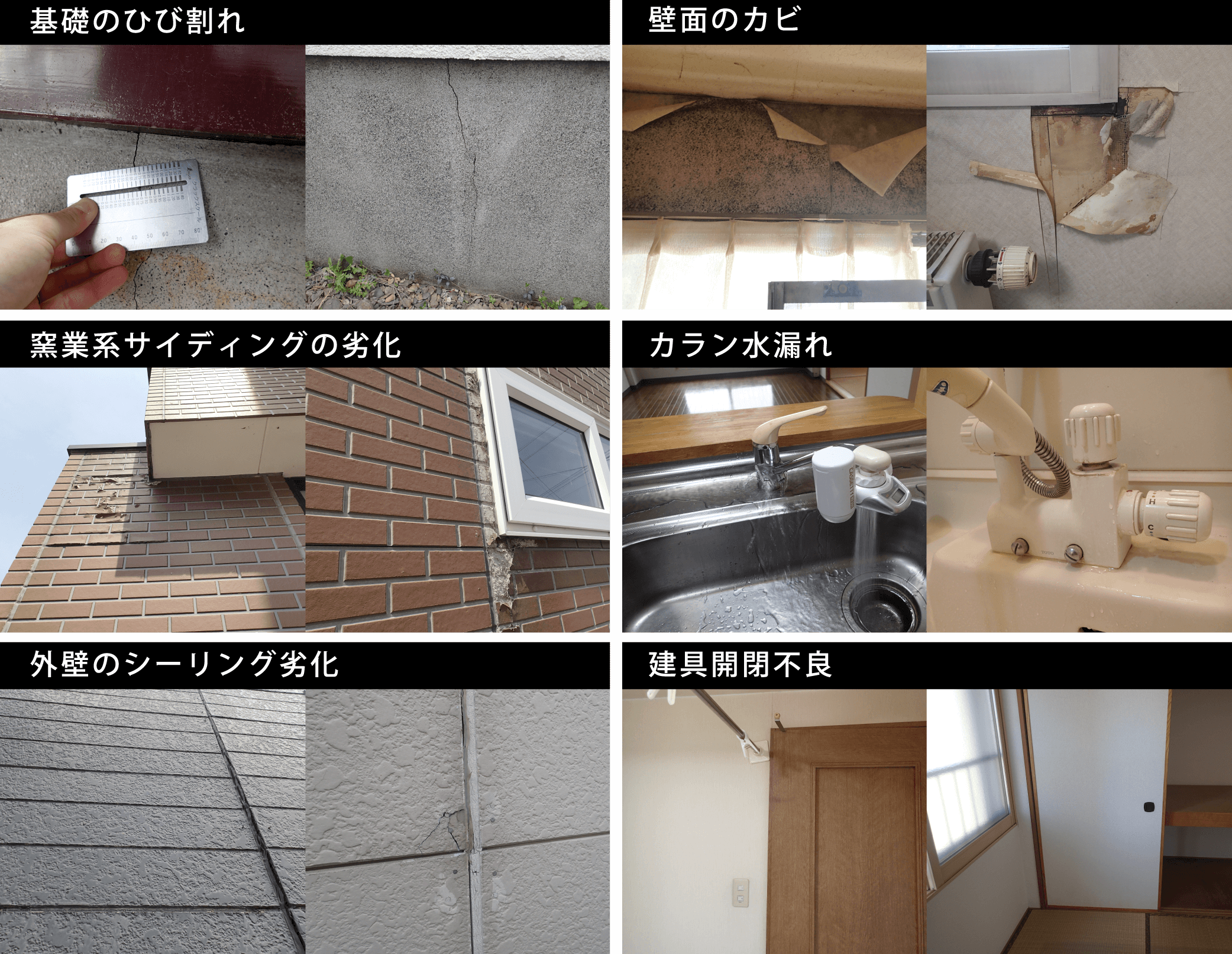 基礎のひび割れ、壁面のカビ、窯業(ようぎょう)系サイディングの劣化、カラン水漏れ、外壁のシーリング劣化、建具開閉不良