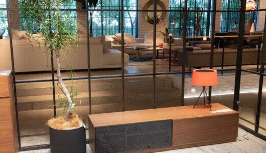 プロだけが知っている、家具に植物を合わせる「黄金律」
